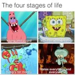 Stage in Life since I was born